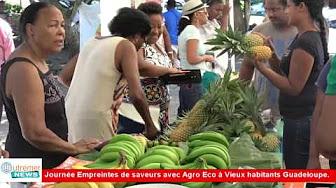 [Vidéo] GUADELOUPE. Journée Empreintes de saveurs avec Agro éco à Vieux habitants.