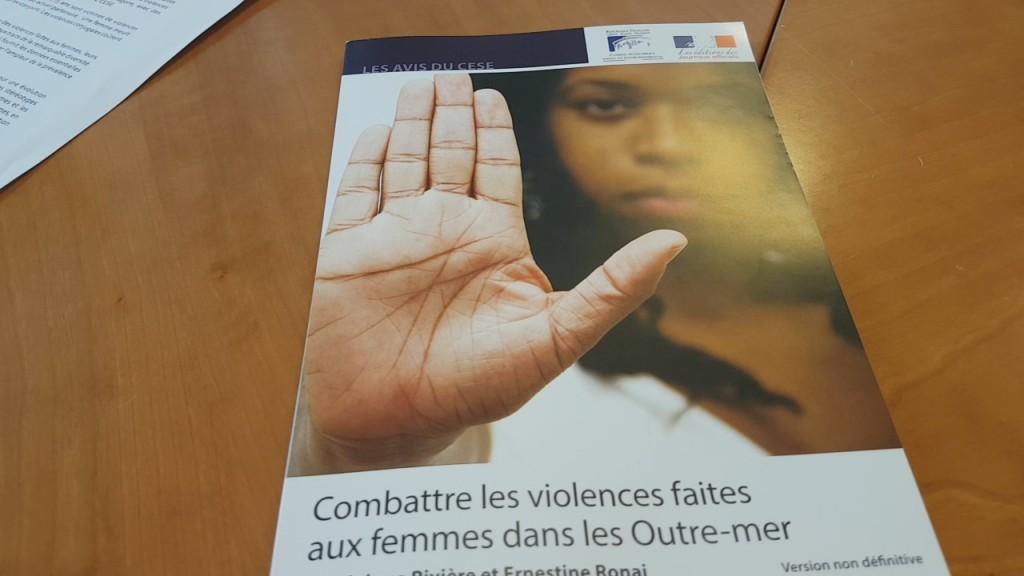 [Vidéo] HEXAGONE. LE C.E.S.E vote en Assemblée Plénière à paris un projet d'avis ( Combattre les violences faites aux femmes dans les Outre mer )