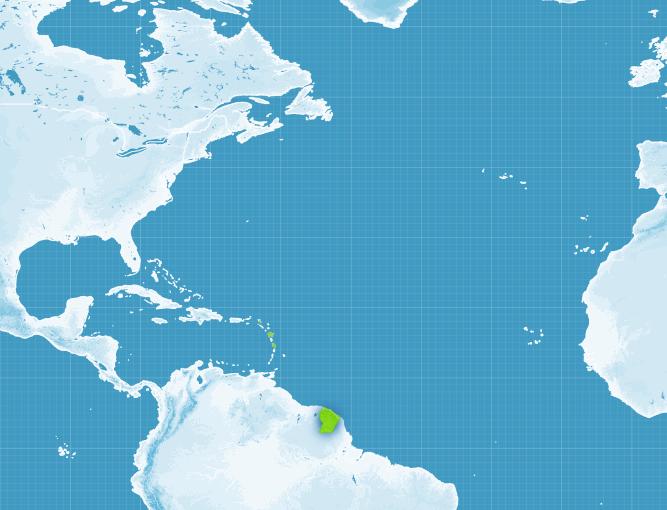 Communiqué d'activité cyclonique concernant IRMA (Source Météo France)