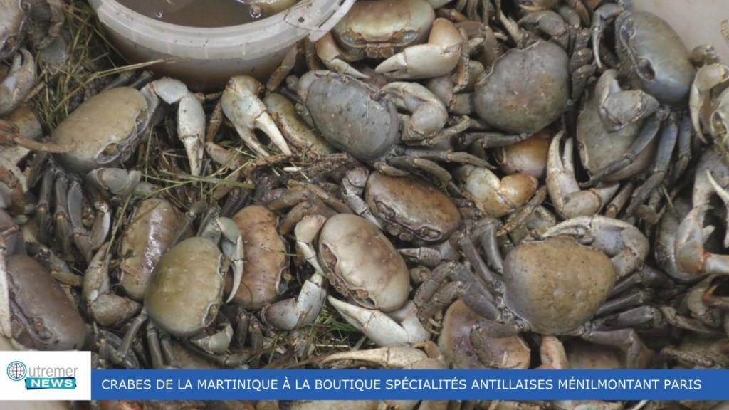[Vidéo] HEXAGONE. Arrivage de crabes à Paris depuis la Martinique pour les fêtes de Pâques