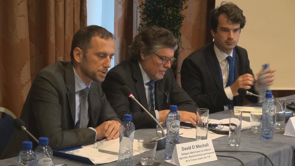 [Vidéo] Réunion à Bruxelles contre la réduction de 3,9% du Budget POSEI organisée par l'EURODOM