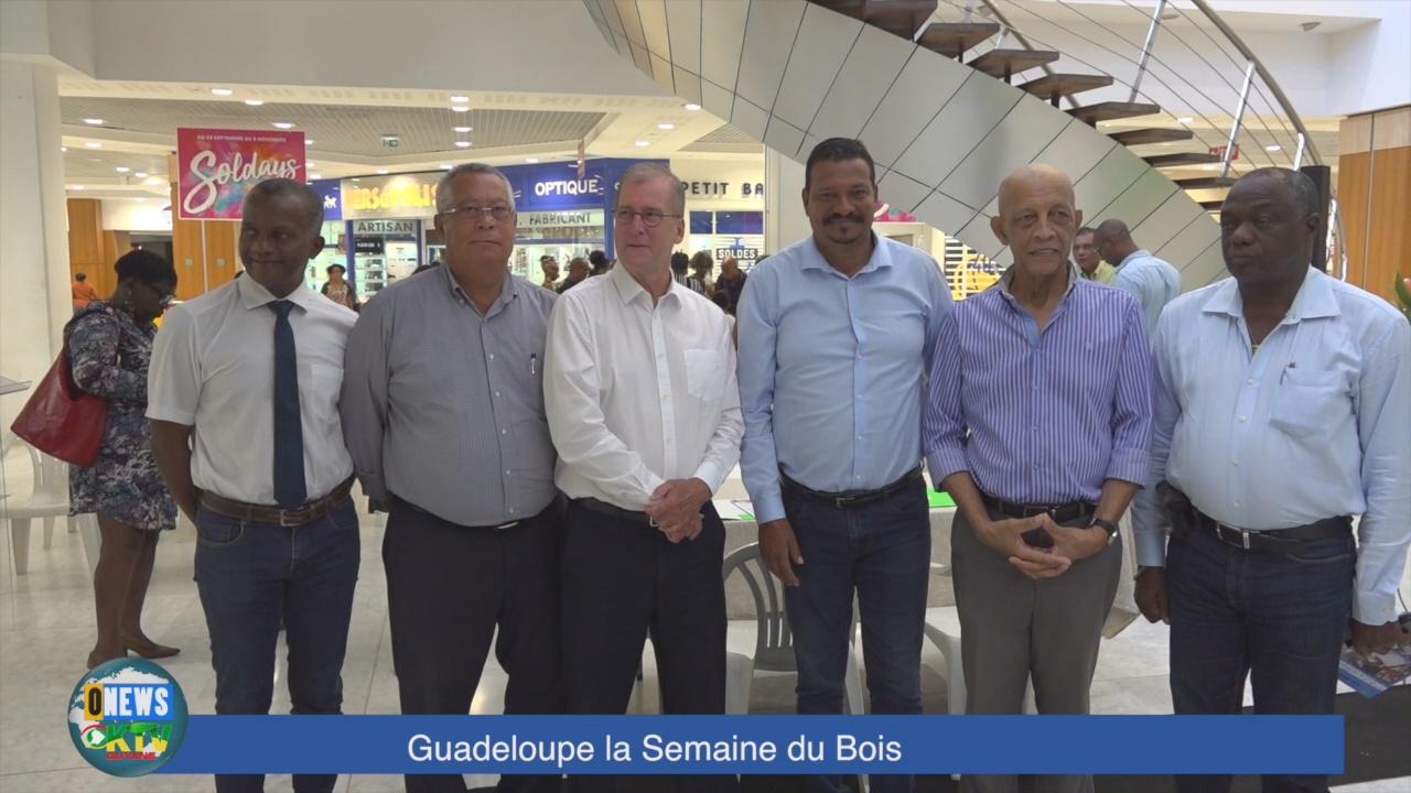 [Vidéo] Guadeloupe. La semaine du Bois