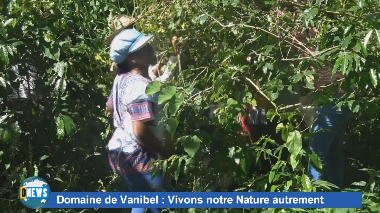 [Vidéo] Guadeloupe. Reportage sur le Domaine de Vanibel. ONEWS Guadeloupe.