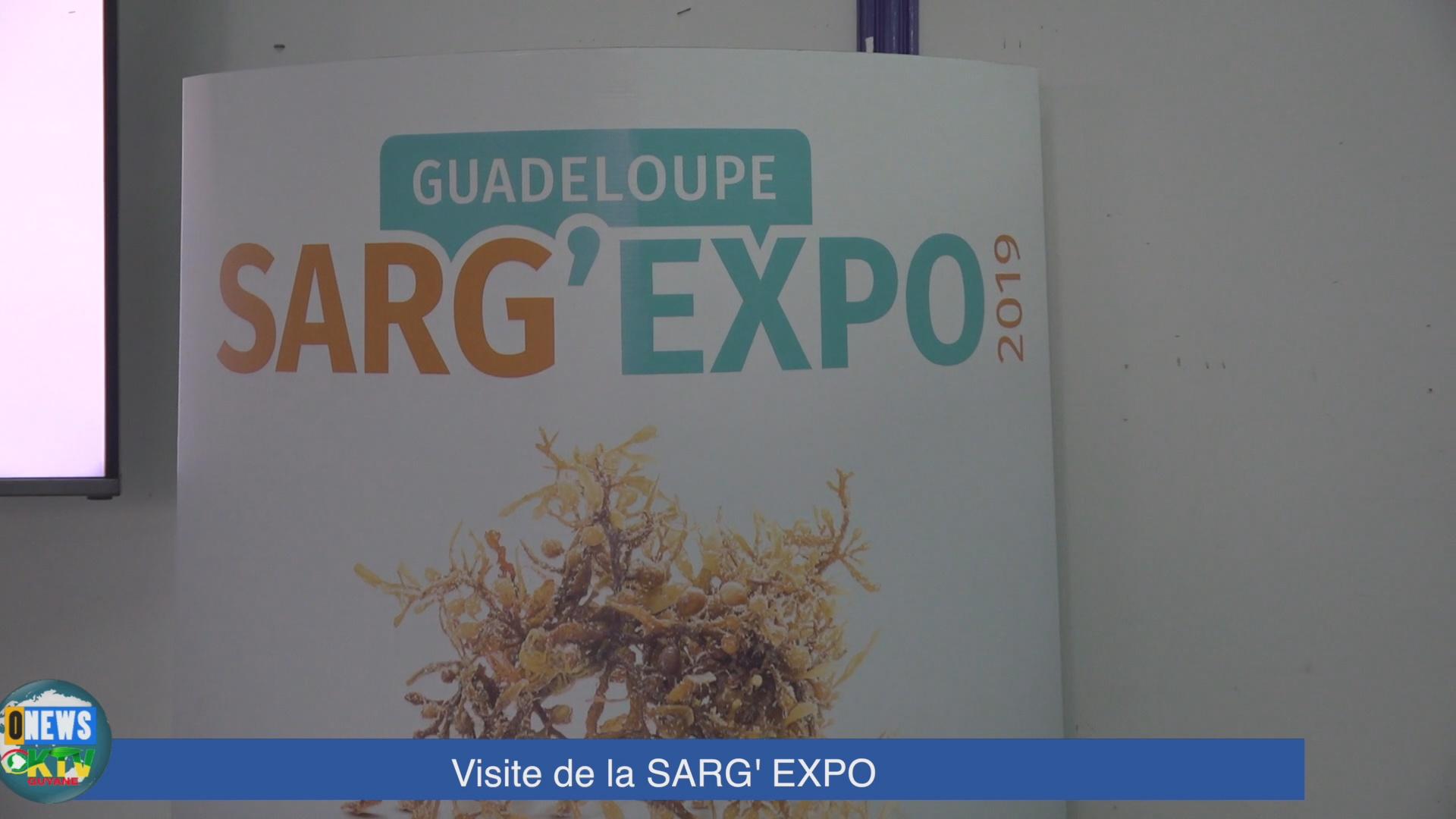 [Vidéo] GUADELOUPE. Salon Sarg' Expo