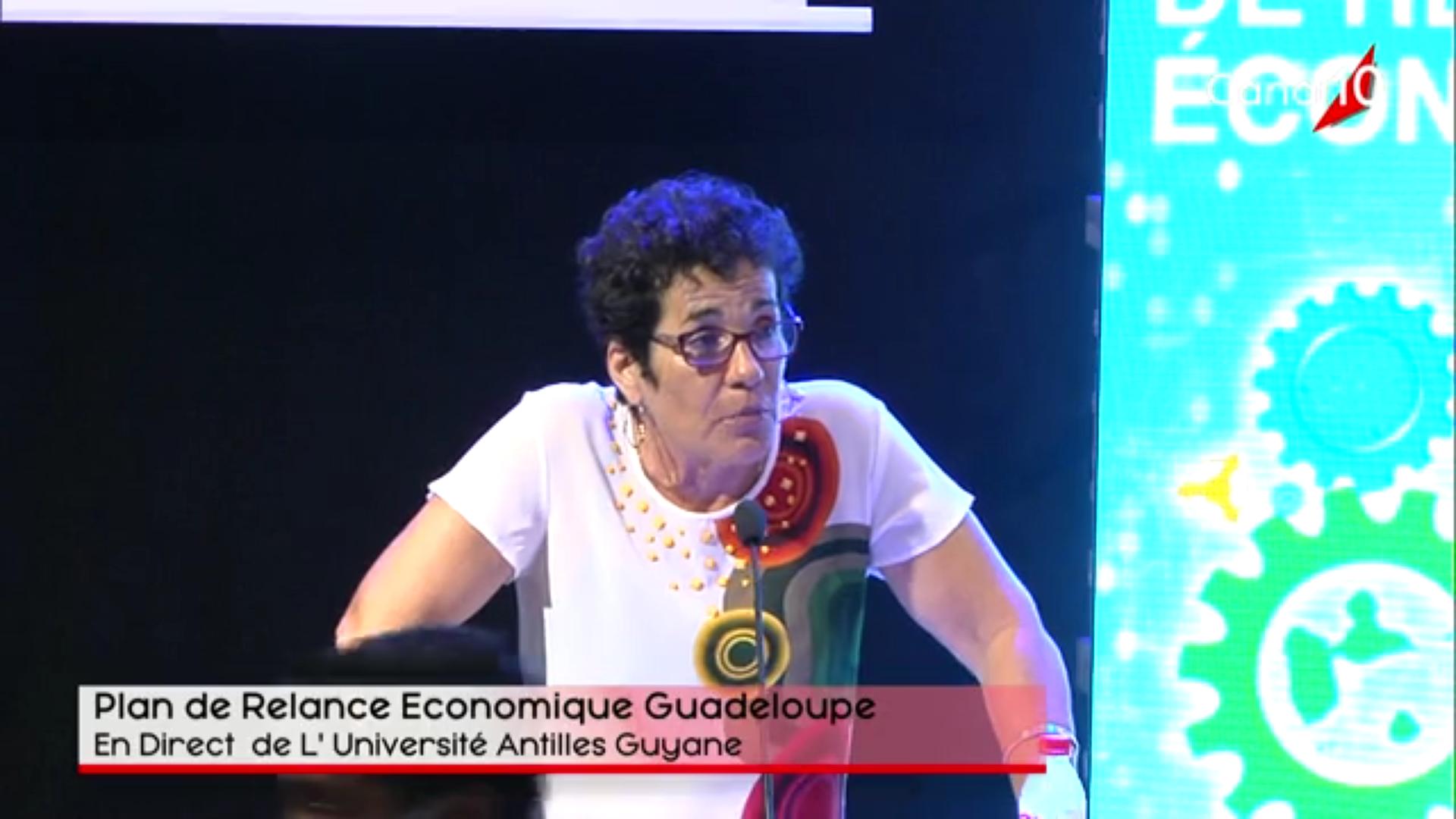 [Vidéo] Onews Guadeloupe.Journée Plan de realance économique.(Canal 10)