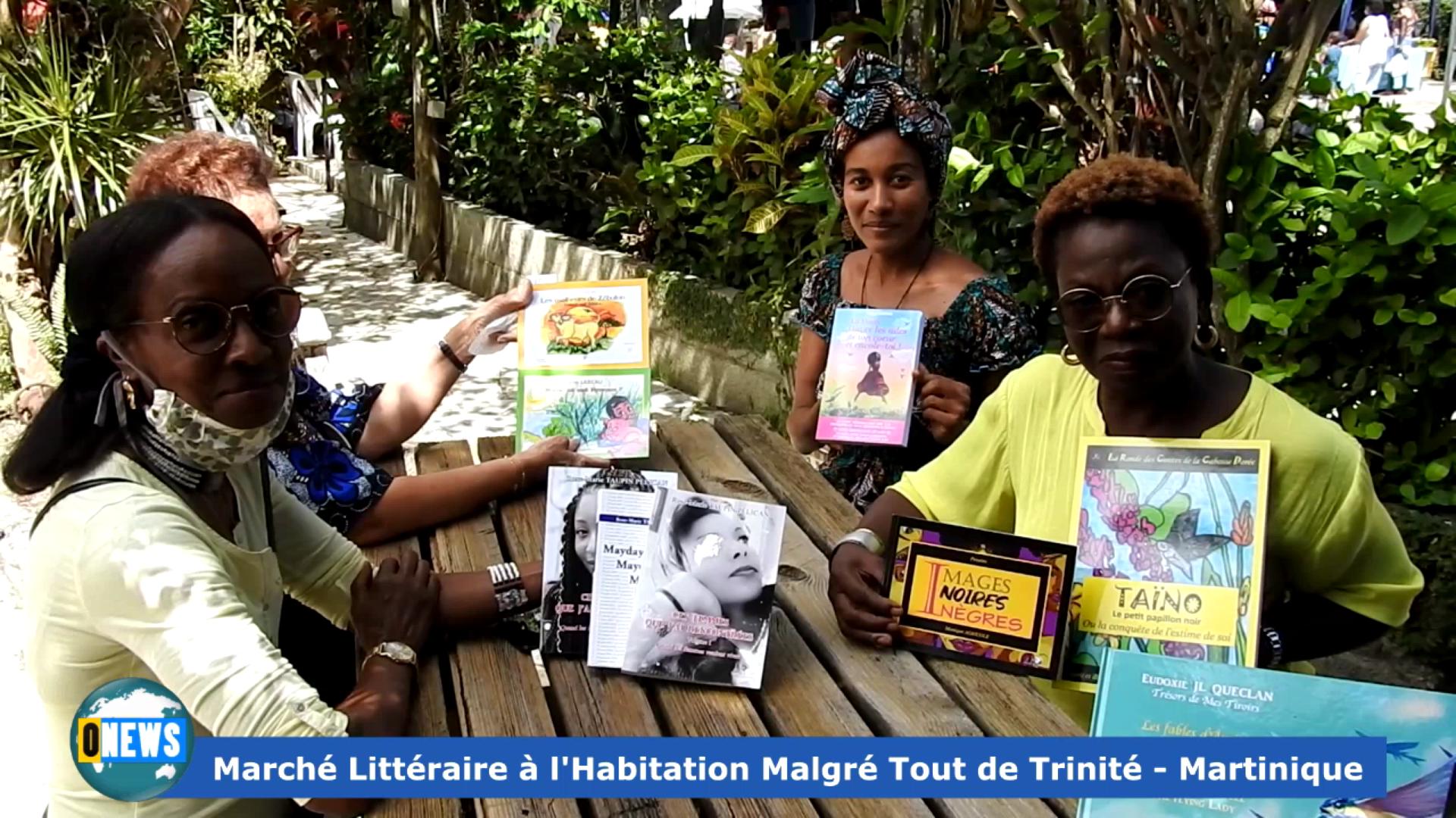 Onews Martinique. Marché littéraire à l habitation Malgré Tout de Trinité