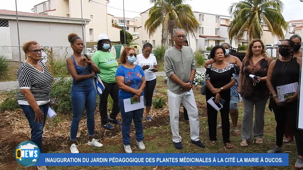 [vidéo] Onews Martinique. Inauguration du Jardin Pédagogique des plantes médicinales à Ducos