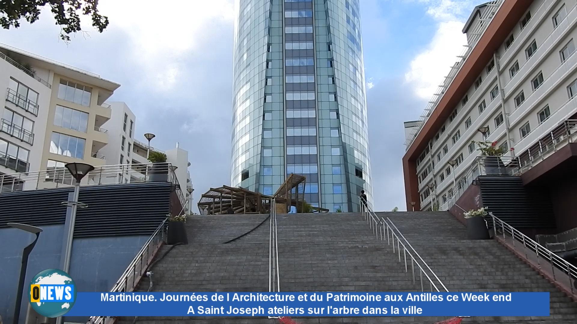 [Vidéo] Martinique. Journées de l' Architecture et du Patrimoine aux Antilles ce Week end. A Saint Joseph ateliers sur l'arbre dans la ville